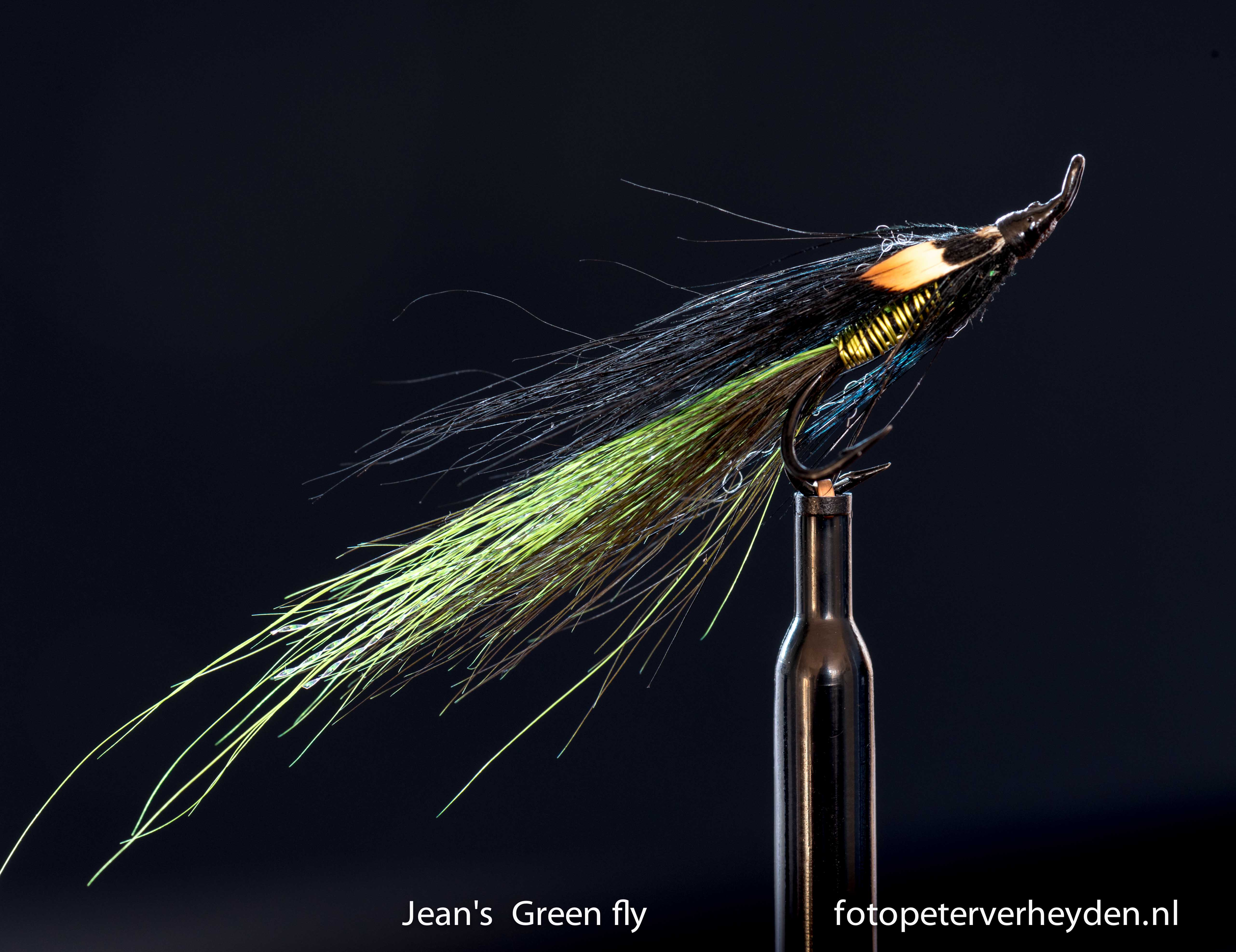 Jeans green fly