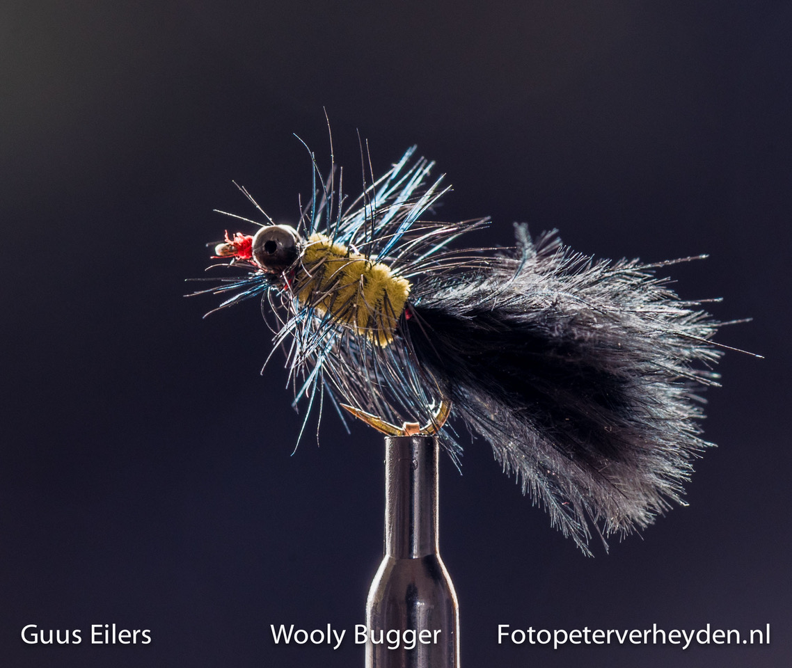 wooly bugger GE 2